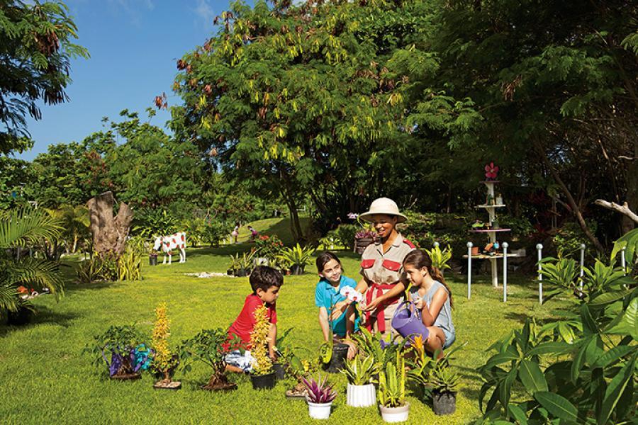 Now Garden Punta Cana Punta Cana