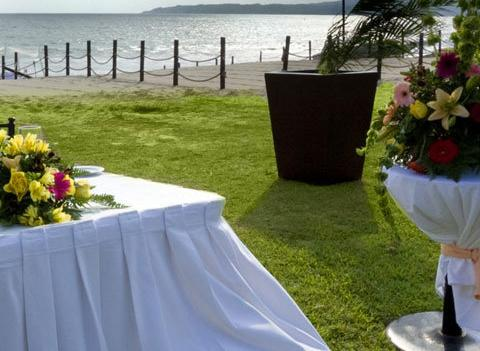 Samba Vallarta Wedding