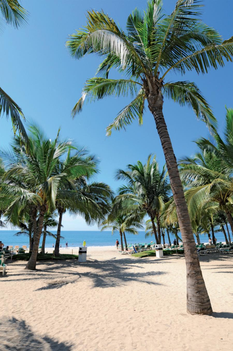 Riu Jalisco All Inclusive Beach Resort Puerto Vallarta