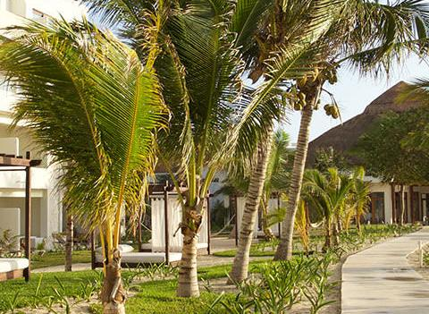 Akumal Bay Beach Wellness Resort Beach 2