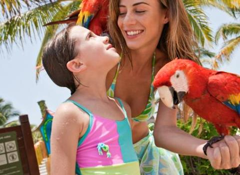 Barcelo Maya Palace Deluxe Kids 4